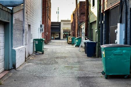 Uliczka miejska ze śmieciami, śmietnikami i śmietnikami, a w oddali ceglany budynek