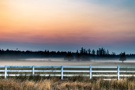 Cloudy haze sunrise with a white fence and trees in a field