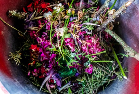 Waste bin full of garden clippings and various plant parts