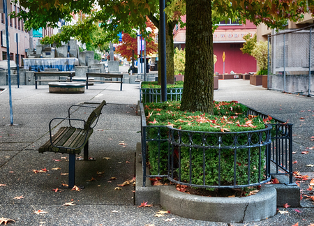 Urban inner city park with bench and leaves