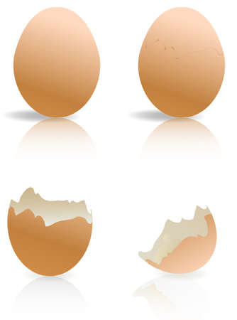 boiled eggs: brown and broken egg shells isolated