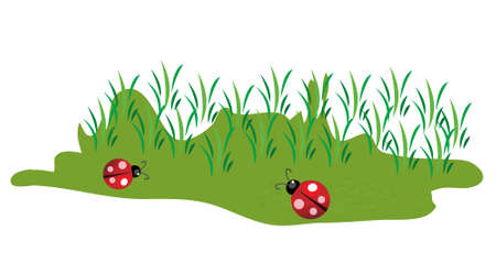 Cute little lady bugs on green grass illustration Stock Vector - 7555408