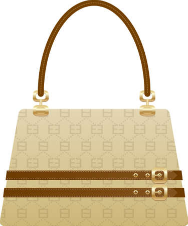 beautiful handbag purse on the white back ground Vector