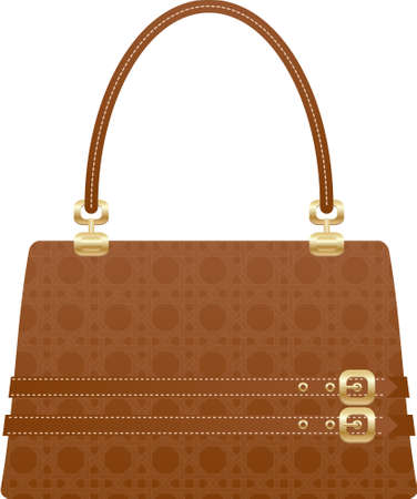 beautiful handbag purse on the white back ground Vector