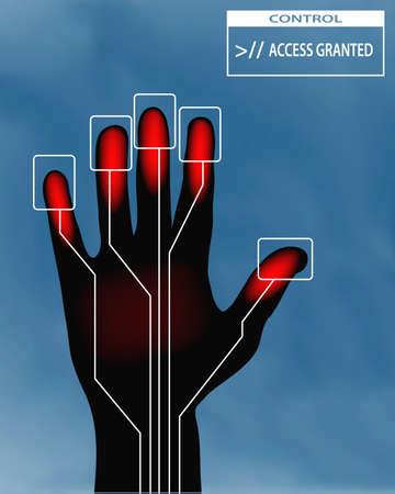 glowing skin: Ilustraci�n de una mano derecha con el concepto de acceso concedido Vectores