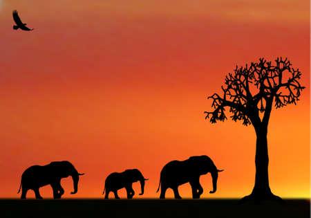 illustraion van de olifanten in zonsondergang in afrika Vector Illustratie