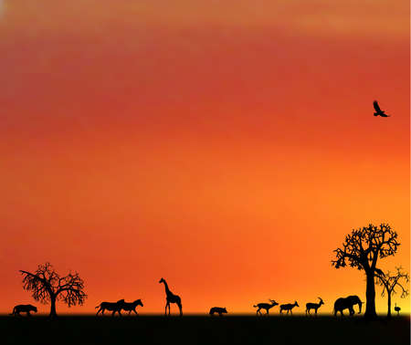 africa tree: illustraion of animals in sunset in africa Illustration