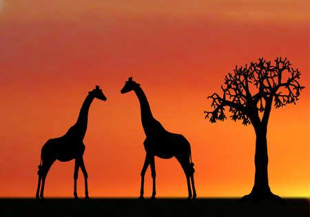 siluetas de elefantes: illustraion de jirafas en puesta de sol en África