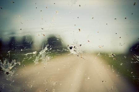 Windshield splatter photo