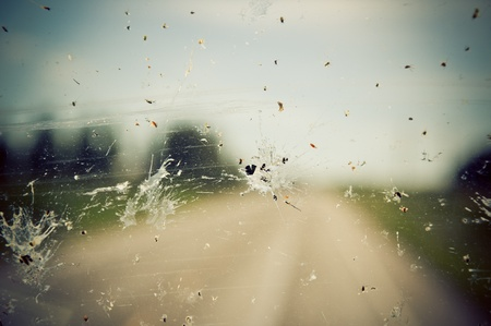 windshield: Windshield splatter