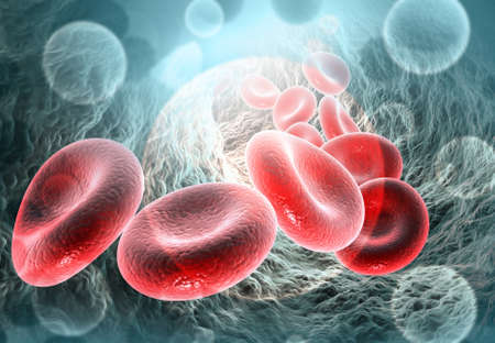 Red blood cells in vein. Blood stream.science background. 3d illustration