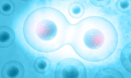 Human cells division. 3d illustration