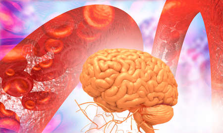 Human brain with blood stream. 3d illustration  Stockfoto