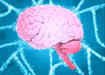Human brain electrical signal. 3d illustration