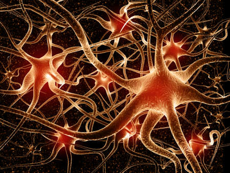 Neural network in the brain. nervous system, Neurons. 3d render Stockfoto