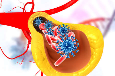 Virus in bloodstream. 3d illustration   Reklamní fotografie