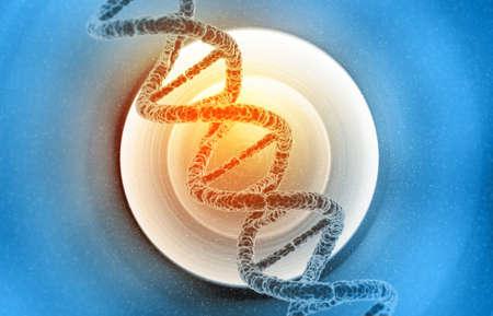DNA molecules on the medical background. 3d illustration