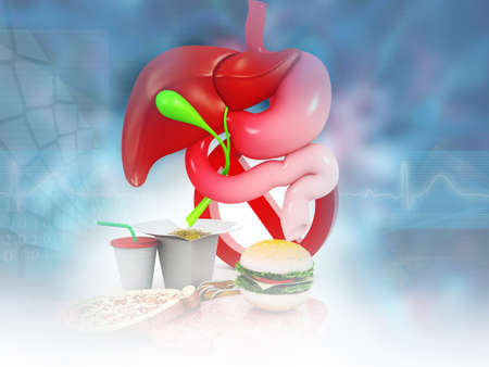 Human digestive system with junk foods. 3d illustration Foto de archivo - 135031225