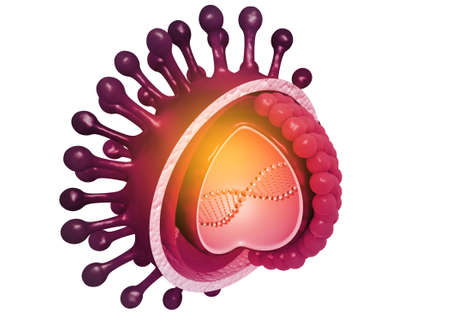 Virus anatomy. 3d render Stockfoto
