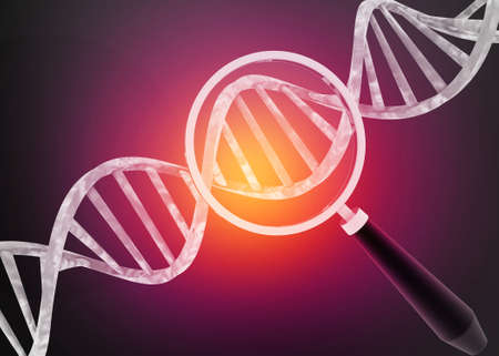 Dna chain with magnifying glass,Dna analysis. 3d render Stock Photo