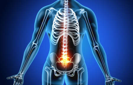 Anatomy of human body with hip pain. 3d illustration