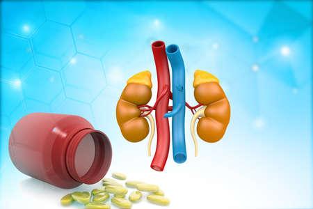 Human kidneys with medicine health pills drug on blues background. 3d illustration