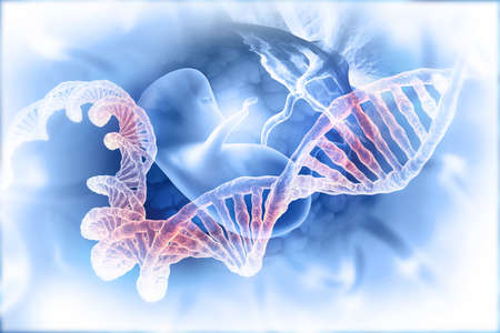 Fetus and dna on abstract scientific background. 3d illustration