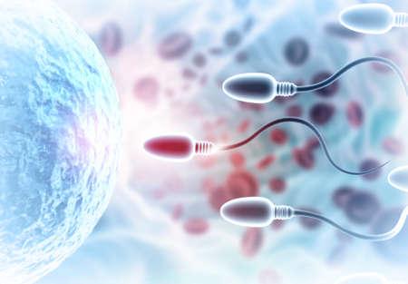 CEggs choose sperm, fertilization. 3d illustration