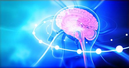 Human brain with wave signals. 3d illustration Standard-Bild