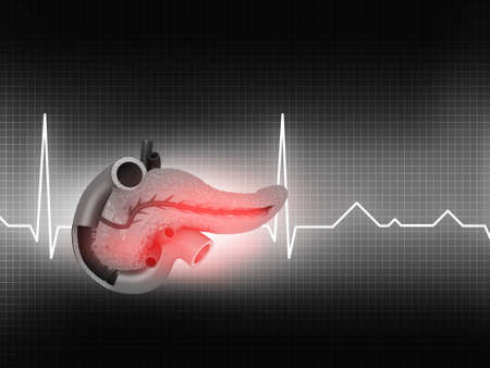 Human pancreas medical background. 3d illustration