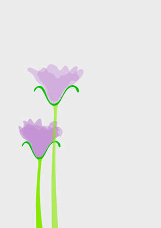 Purple  lilac flowers in bloom - Vector graphics