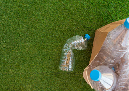 Several plastic bottles ready to be recycled in a trash bin