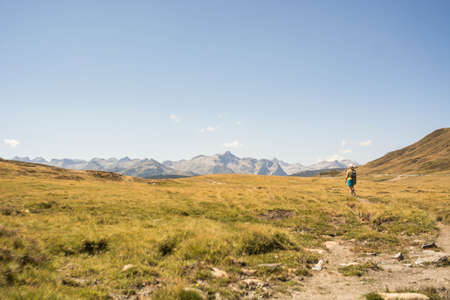 Woman hiking through a high mountain valley where there are cows. The place is located in the Catalan Pyrenees in the Aran Valley.