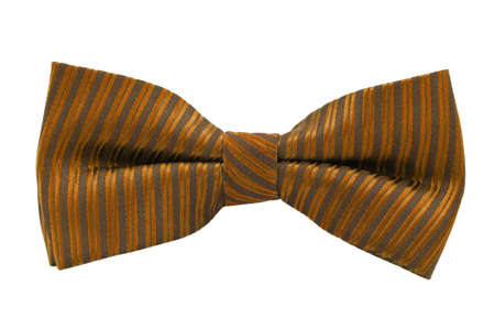 Orange bow tie isolated on white background