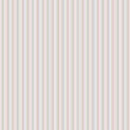 cardboard texture: Cardboard texture. Striped vector surface for your design and ideas.