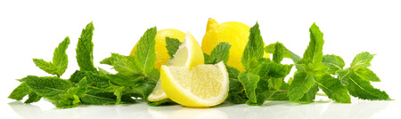 Lemon and mint panorama on white background 스톡 콘텐츠