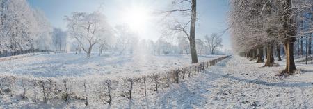 Park Panorama - Winter Time Stok Fotoğraf - 121778085