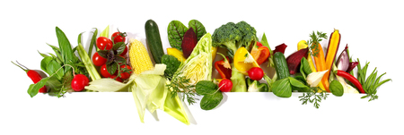 Various Vegetables - Panorama Stockfoto