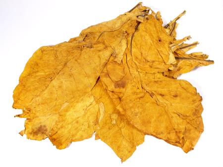 Getrocknete Tabakblätter