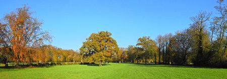 Park Panorama - Autumn