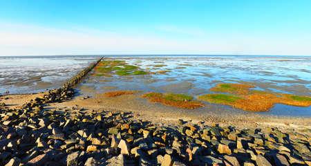 North Sea Watt panorama 版權商用圖片