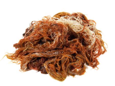 Red seaweed isolated on white background 版權商用圖片 - 168232591