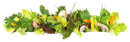 Various salad panorama isolated on white background 版權商用圖片