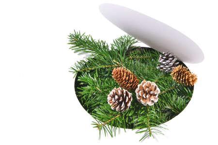 Christmas fir branches through round white paper Standard-Bild