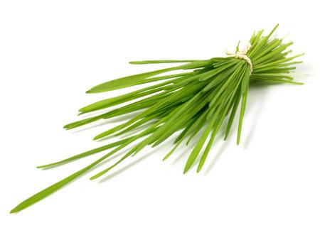 Wheatgrass Bundle Isolated on white Standard-Bild