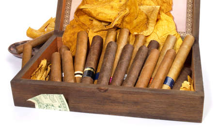 Cigars in a box isolated on white