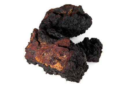 Chaga Mushroom with Pieces isolated - Natural Minerals
