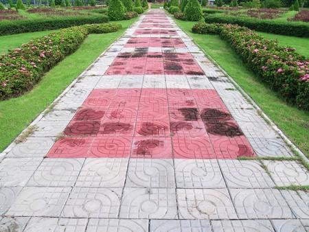 Park pathway among tree surgery in beautiful garden Stock Photo - 8137945