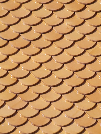 tidiness: Beautiful tidiness of curved roof tile pattern Stock Photo