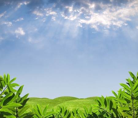 Summer paradise view with green foliage meadow and rays from heaven Stock Photo